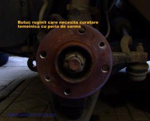butuc ruginit-001